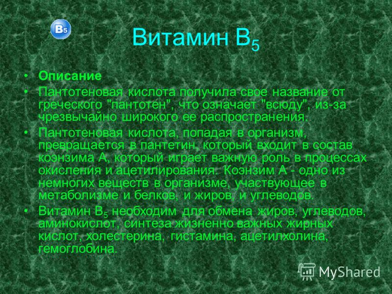 Витамин В 5 Описание Пантотеновая кислота получила свое название от греческого