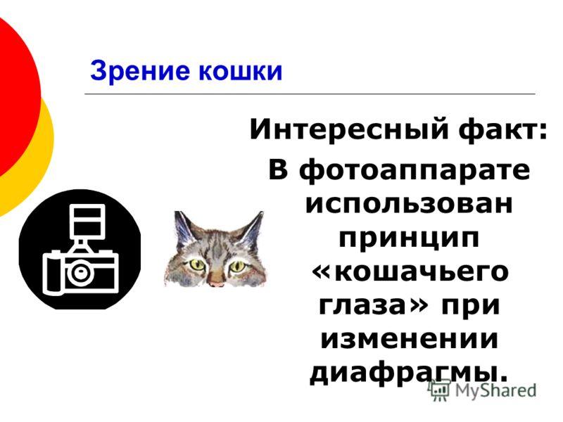 Интересный факт: В фотоаппарате использован принцип «кошачьего глаза» при изменении диафрагмы.