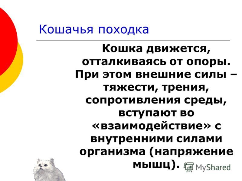 Кошка движется, отталкиваясь от опоры. При этом внешние силы – тяжести, трения, сопротивления среды, вступают во «взаимодействие» с внутренними силами организма (напряжение мышц).