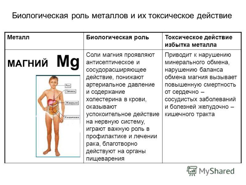 МеталлБиологическая рольТоксическое действие избытка металла МАГНИЙ Mg Соли магния проявляют антисептическое и сосудорасширяющее действие, понижают артериальное давление и содержание холестерина в крови, оказывают успокоительное действие на нервную с