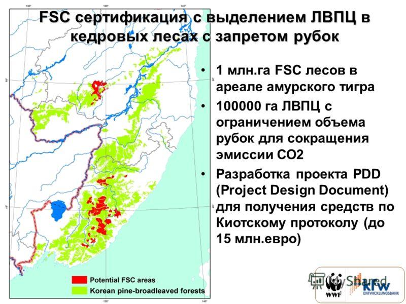 1 млн.га FSC лесов в ареале амурского тигра 100000 га ЛВПЦ с ограничением объема рубок для сокращения эмиссии СО2 Разработка проекта PDD (Project Design Document) для получения средств по Киотскому протоколу (до 15 млн.евро) FSC сертификация с выделе