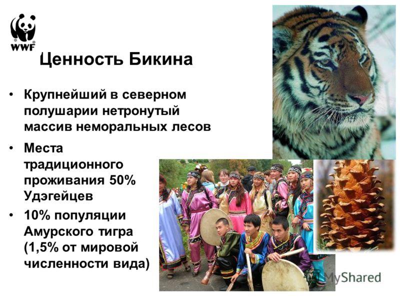 Ценность Бикина Места традиционного проживания 50% Удэгейцев 10% популяции Амурского тигра (1,5% от мировой численности вида) Крупнейший в северном полушарии нетронутый массив неморальных лесов