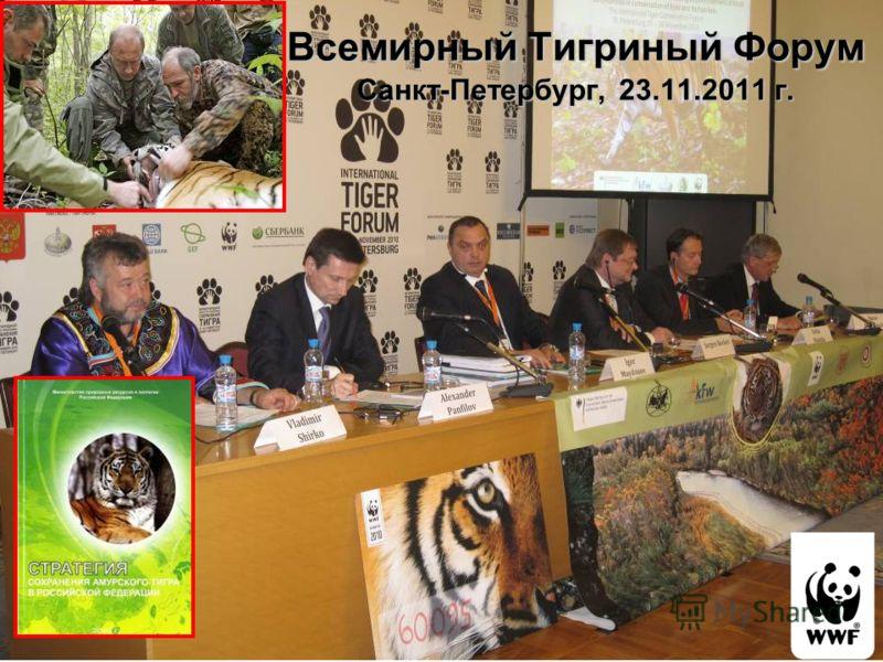 Всемирный Тигриный Форум Санкт-Петербург, 23.11.2011 г.