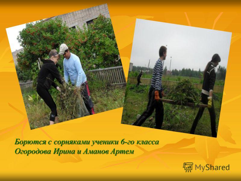 Борются с сорняками ученики 6-го класса Огородова Ирина и Аманов Артем