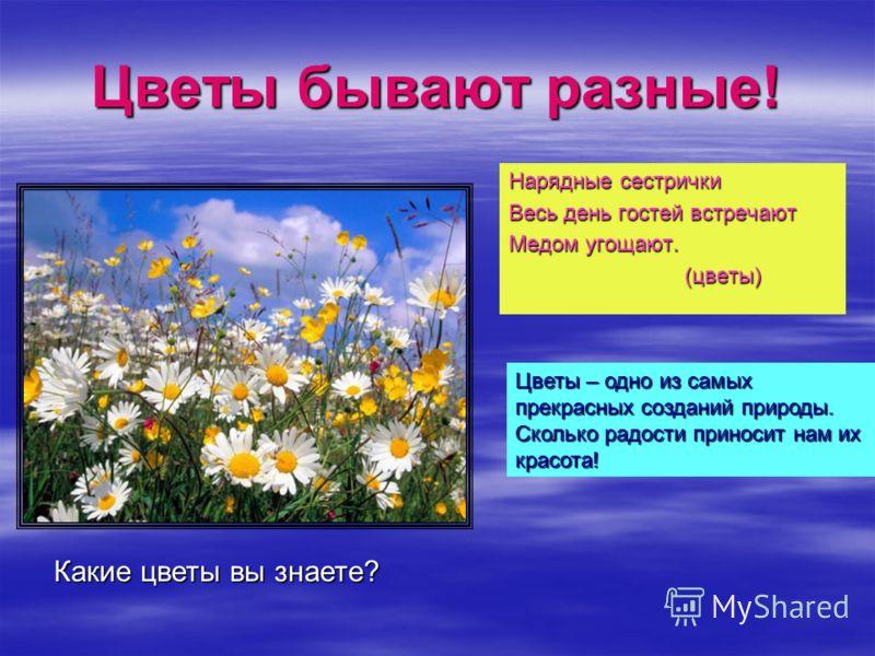 Цветы бывают разные! Нарядные сестрички Весь день гостей встречают Медом угощают. (цветы) (цветы) Какие цветы вы знаете? Цветы – одно из самых прекрасных созданий природы. Сколько радости приносит нам их красота!