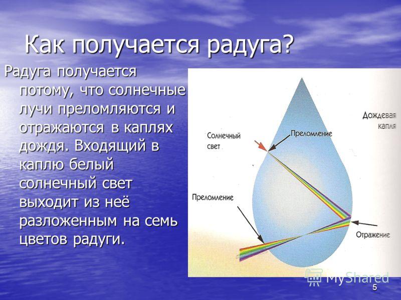 5 Как получается радуга? Радуга получается потому, что солнечные лучи преломляются и отражаются в каплях дождя. Входящий в каплю белый солнечный свет выходит из неё разложенным на семь цветов радуги.