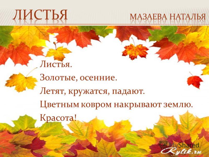 Листья. Золотые, осенние. Летят, кружатся, падают. Цветным ковром накрывают землю. Красота!