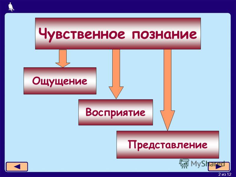 2 из 12 Представление Чувственное познание Ощущение Восприятие