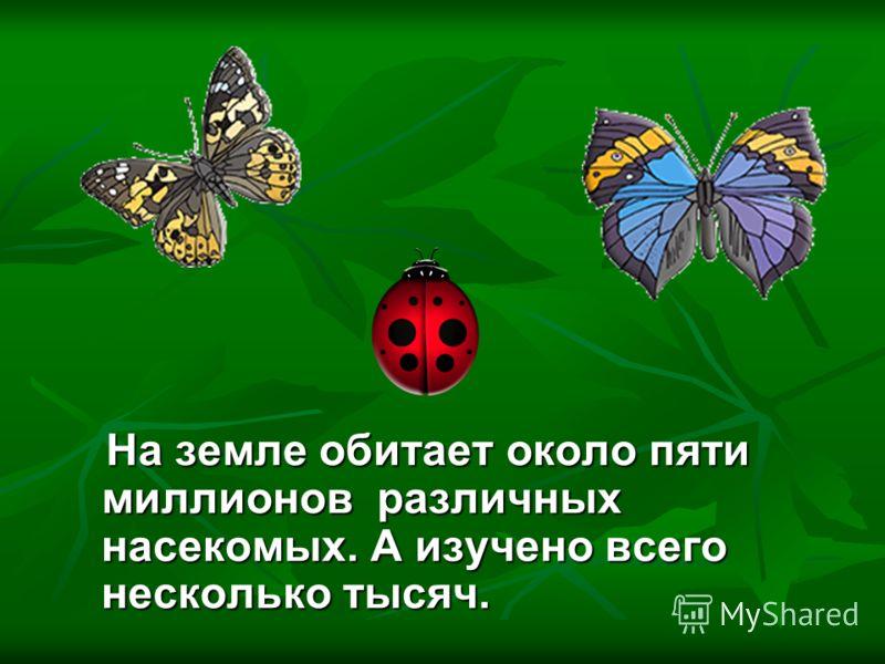 На земле обитает около пяти миллионов различных насекомых. А изучено всего несколько тысяч. На земле обитает около пяти миллионов различных насекомых. А изучено всего несколько тысяч.