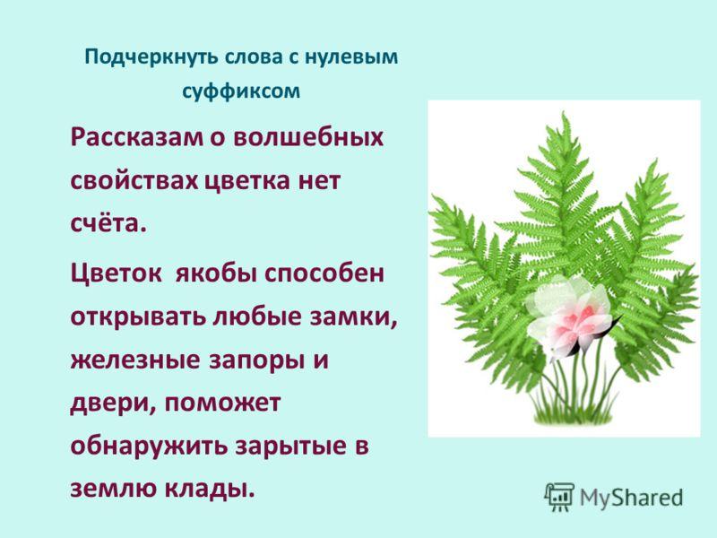 Подчеркнуть слова с нулевым суффиксом Рассказам о волшебных свойствах цветка нет счёта. Цветок якобы способен открывать любые замки, железные запоры и двери, поможет обнаружить зарытые в землю клады.