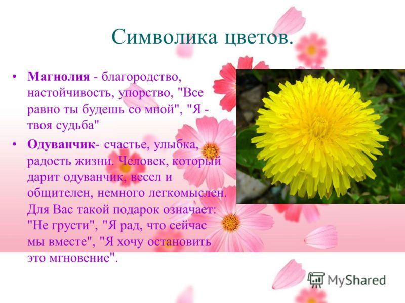 Символика цветов. Магнолия - благородство, настойчивость, упорство,