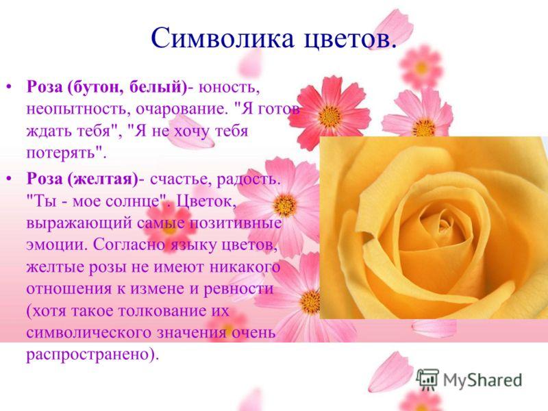Символика цветов. Роза (бутон, белый)- юность, неопытность, очарование.