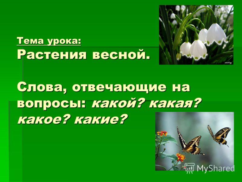 Тема урока: Растения весной. Слова, отвечающие на вопросы: какой? какая? какое? какие?