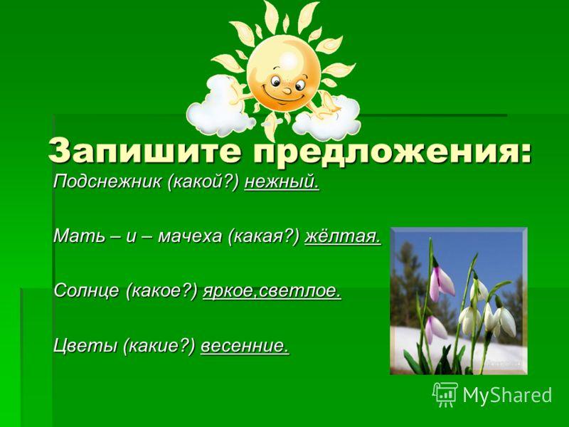Запишите предложения: Подснежник (какой?) нежный. Мать – и – мачеха (какая?) жёлтая. Солнце (какое?) яркое,светлое. Цветы (какие?) весенние.