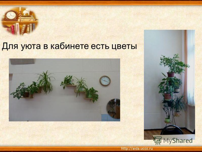 Для уюта в кабинете есть цветы