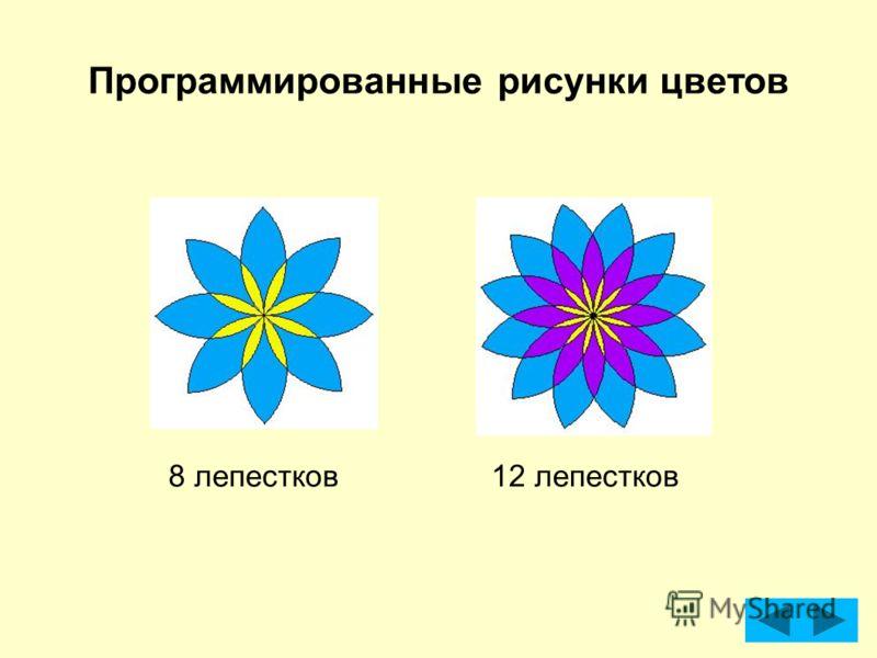 Программированные рисунки цветов 8 лепестков12 лепестков