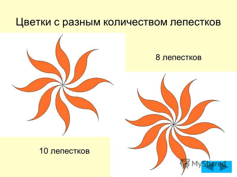 Цветки с разным количеством лепестков 8 лепестков 10 лепестков