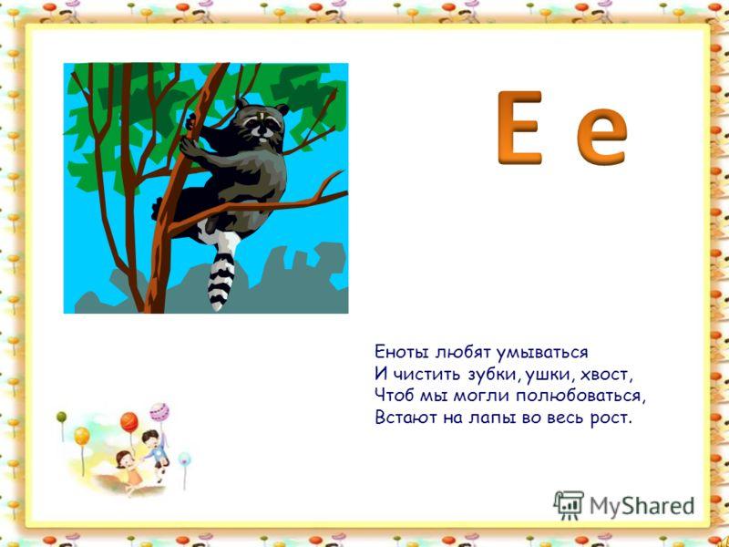 Дятел - хорошая птица. Дятел любит трудиться. Дятел по дереву громко стучит И до тебя этот стук долетит.