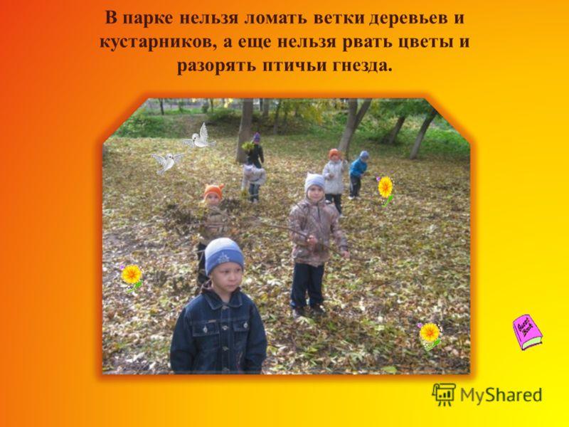 Римма Юрьевна объясняет нам одно из самых простых правил: не оставляй в парке мусора! Парк теряет свою красоту, если он захламлен!