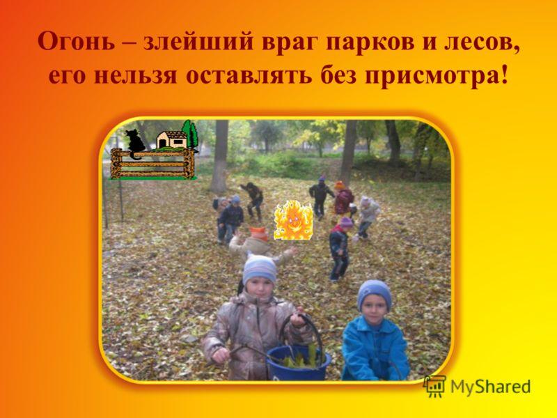 В парке нельзя ломать ветки деревьев и кустарников, а еще нельзя рвать цветы и разорять птичьи гнезда.