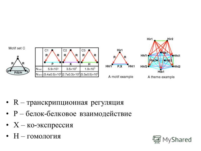 R – транскрипционная регуляция Р – белок-белковое взаимодействие Х – ко-экспрессия Н – гомология