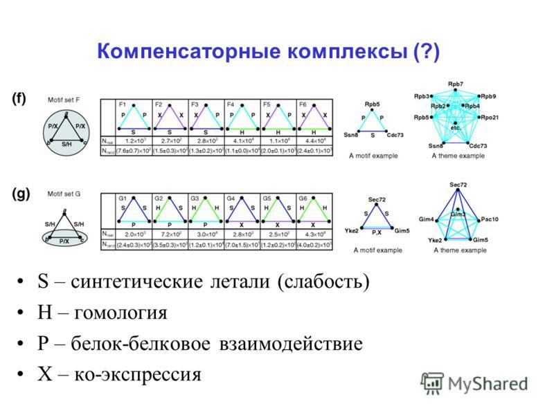 Компенсаторные комплексы (?) S – синтетические летали (слабость) Н – гомология Р – белок-белковое взаимодействие Х – ко-экспрессия