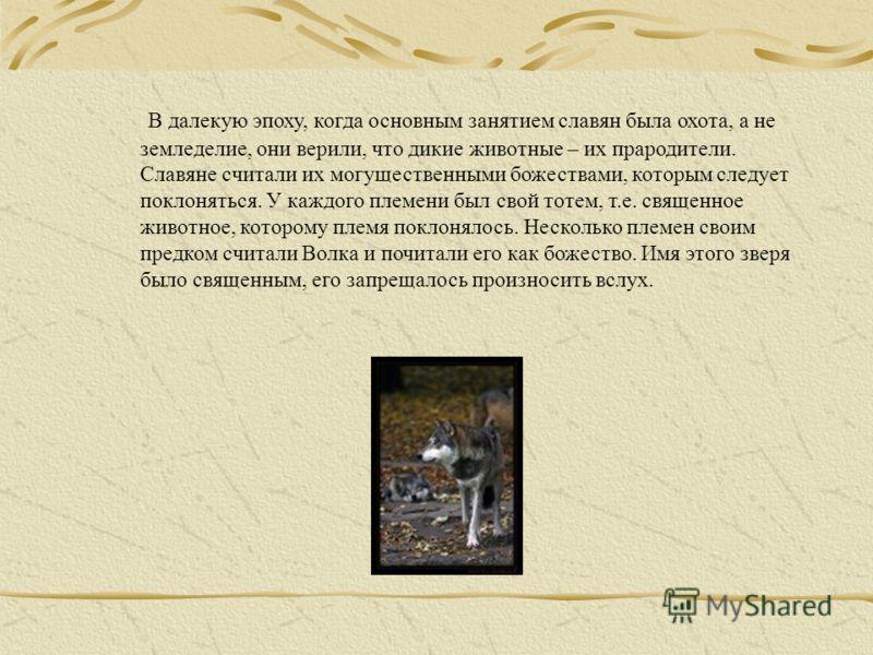 В далекую эпоху, когда основным занятием славян была охота, а не земледелие, они верили, что дикие животные – их прародители. Славяне считали их могущественными божествами, которым следует поклоняться. У каждого племени был свой тотем, т.е. священное