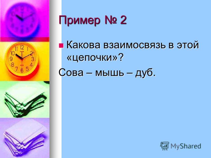 Пример 2 Какова взаимосвязь в этой «цепочки»? Какова взаимосвязь в этой «цепочки»? Сова – мышь – дуб.