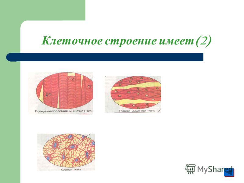 Клеточное строение имеет (2)
