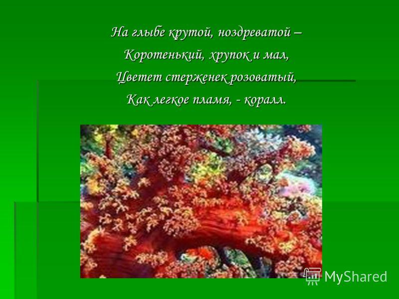 На глыбе крутой, ноздреватой – Коротенький, хрупок и мал, Цветет стерженек розоватый, Как легкое пламя, - коралл.