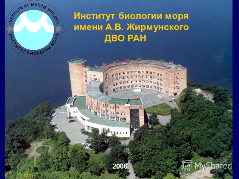 Институт биологии моря имени А.В. Жирмунского ДВО РАН 2006