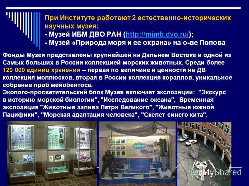 При Институте работают 2 естественно-исторических научных музея: - Музей ИБМ ДВО РАН (http://mimb.dvo.ru/); - Музей «Природа моря и ее охрана» на о-ве Поповаhttp://mimb.dvo.ru/ Фонды Музея представлены крупнейшей на Дальнем Востоке и одной из Самых б