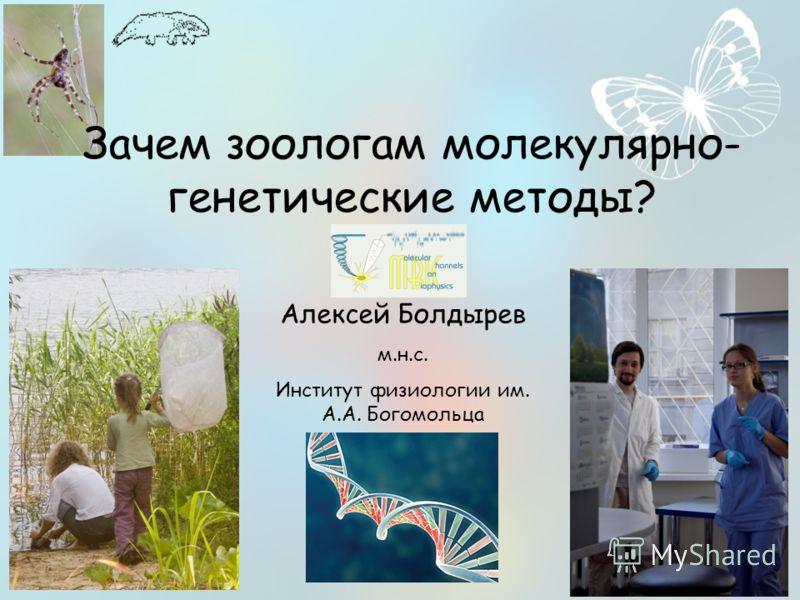 Зачем зоологам молекулярно- генетические методы? Алексей Болдырев м.н.с. Институт физиологии им. А.А. Богомольца
