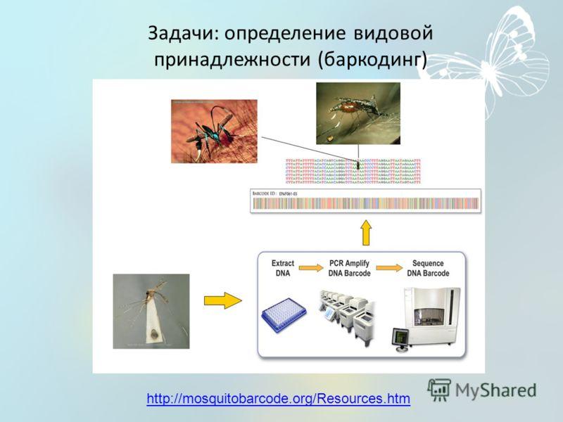 Задачи: определение видовой принадлежности (баркодинг) http://mosquitobarcode.org/Resources.htm