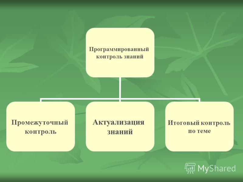 Программированный контроль знаний Промежуточный контроль Актуализация знаний Итоговый контроль по теме
