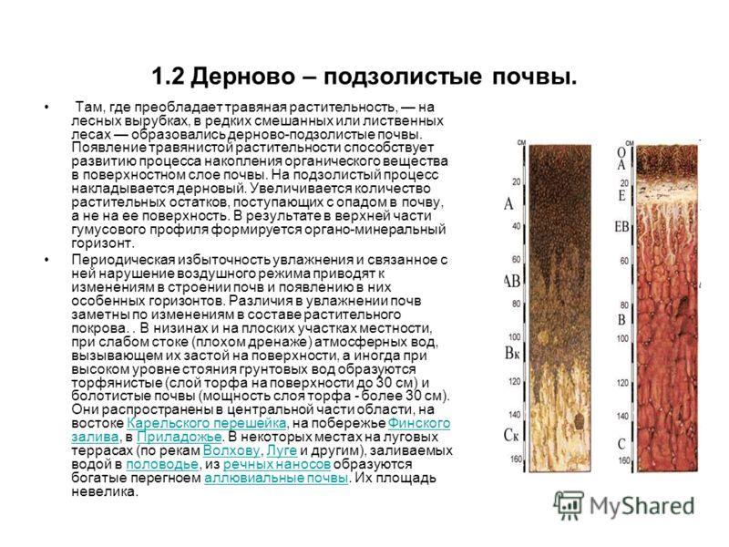 Челябинск, скорая дерново подзолистые почвы белоруссии другом конце