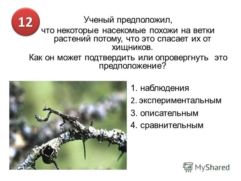 Ученый предположил, что некоторые насекомые похожи на ветки растений потому, что это спасает их от хищников. Как он может подтвердить или опровергнуть это предположение? 1. наблюдения 2. экспериментальным 3. описательным 4. сравнительным 1212