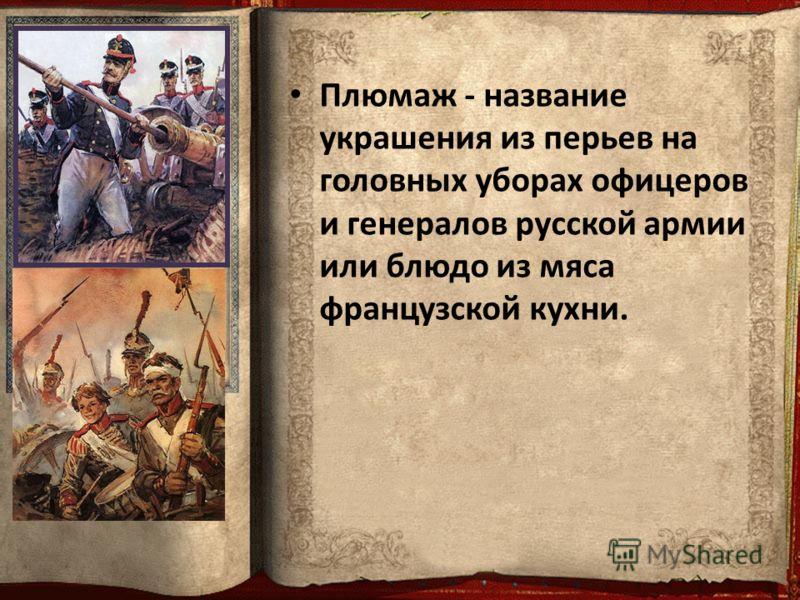 Плюмаж - название украшения из перьев на головных уборах офицеров и генералов русской армии или блюдо из мяса французской кухни.