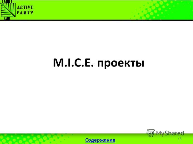 13 M.I.C.E. проекты Содержание