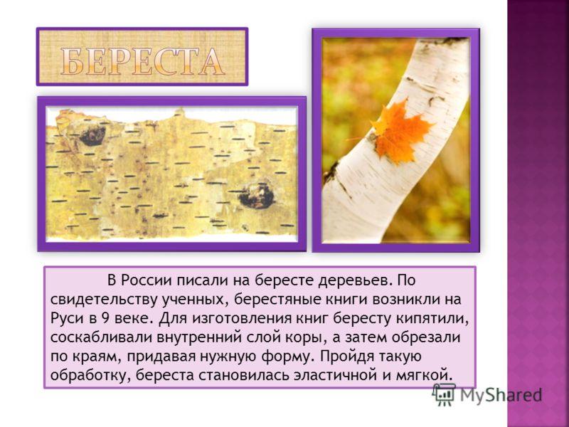 В России писали на бересте деревьев. По свидетельству ученных, берестяные книги возникли на Руси в 9 веке. Для изготовления книг бересту кипятили, соскабливали внутренний слой коры, а затем обрезали по краям, придавая нужную форму. Пройдя такую обраб