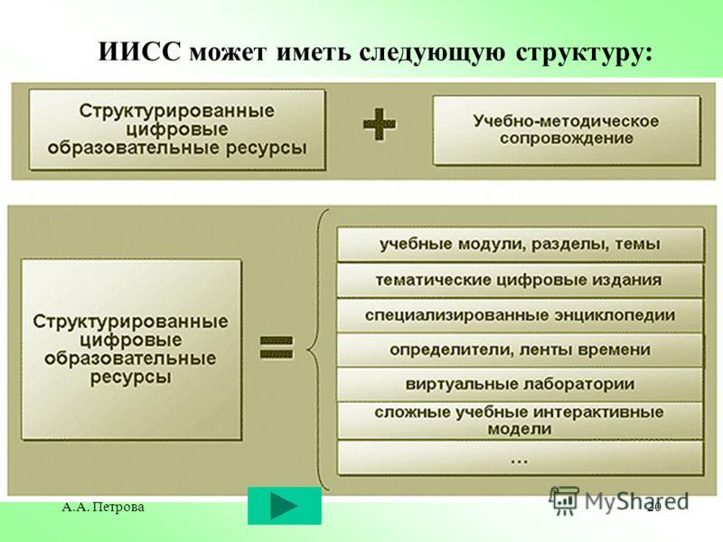 А.А. Петрова20 ИИСС может иметь следующую структуру:
