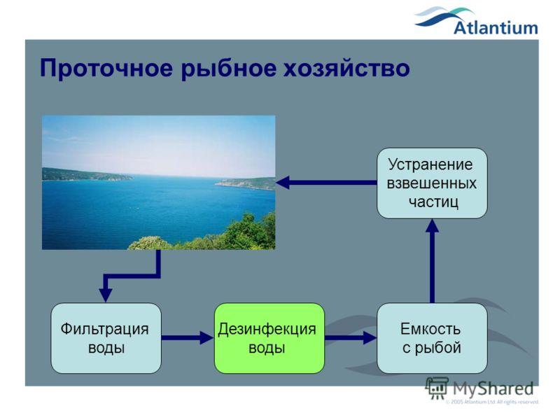Примеры рыбных хозяйств Рыбные хозяйства в искусственном водоеме Рыбные хозяйства с протоком через емкость Рыбные хозяйства с циркуляцией в помещении