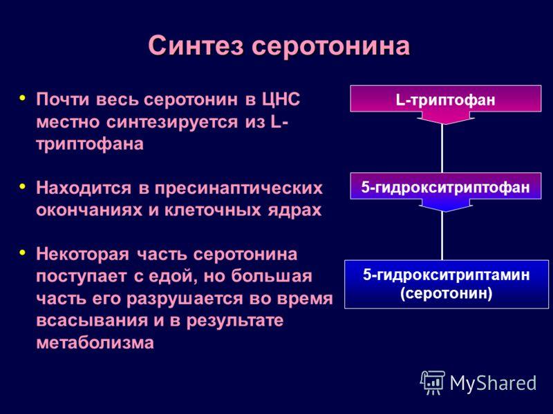 Почти весь серотонин в ЦНС местно синтезируется из L- триптофана Находится в пресинаптических окончаниях и клеточных ядрах Некоторая часть серотонина поступает с едой, но большая часть его разрушается во время всасывания и в результате метаболизма Си