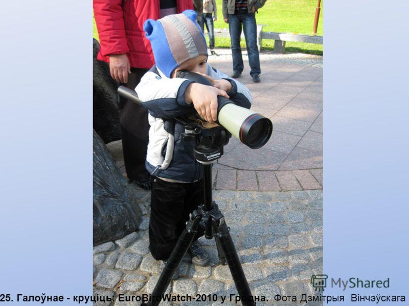 24. EuroBirdWatch-2010: Самы маленькі бёдуотчар з Горадні Фота Дзмітрыя Вінчэўскага