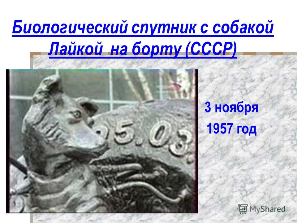 Биологический спутник с собакой Лайкой на борту (СССР) 3 ноября 1957 год