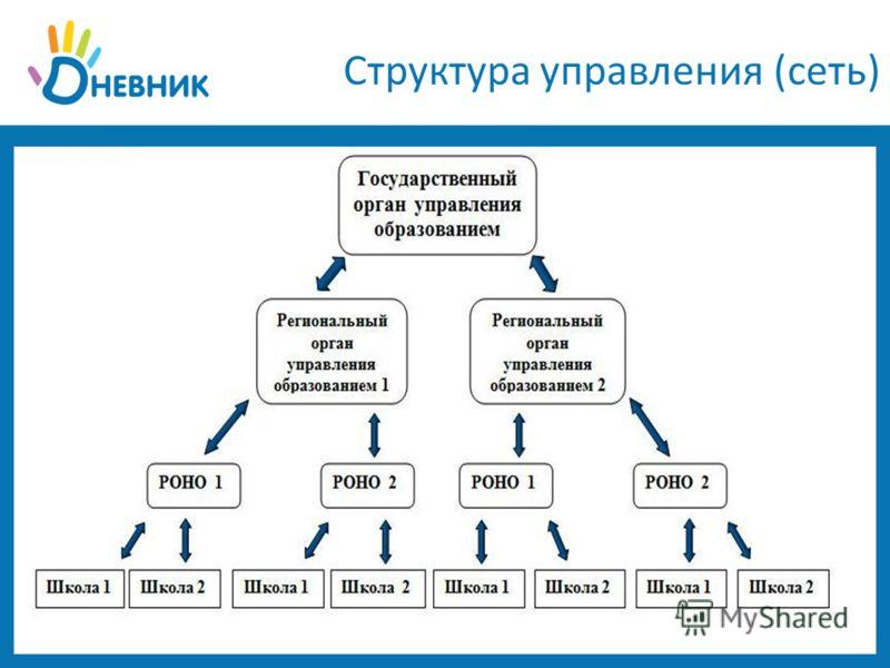 Структура управления (сеть)