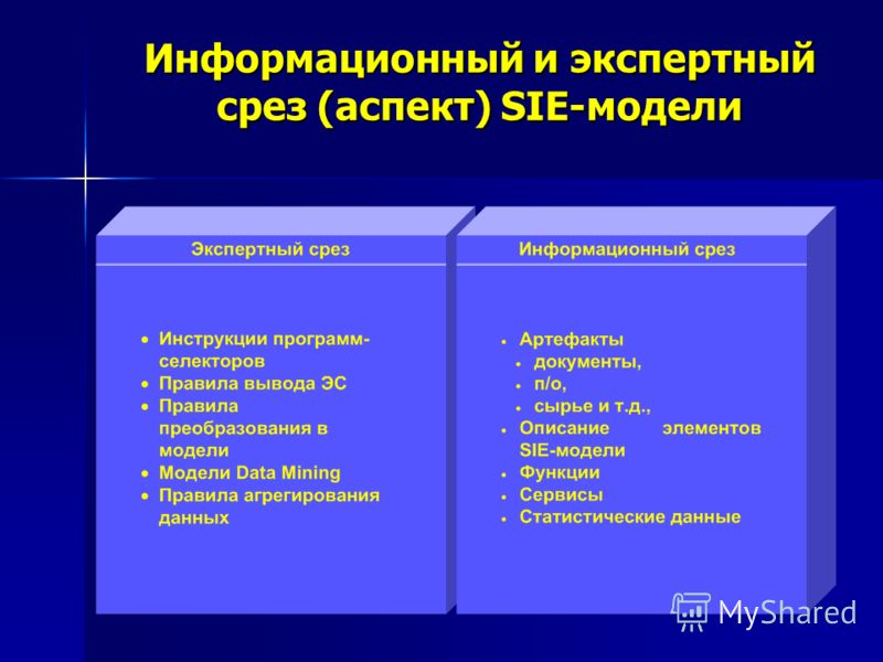 Информационный и экспертный срез (аспект) SIE-модели