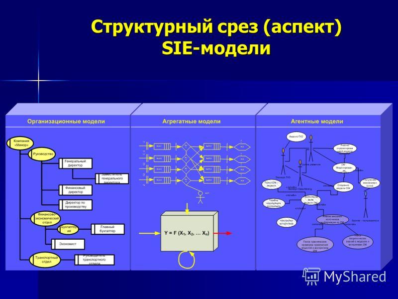 Структурный срез (аспект) SIE-модели