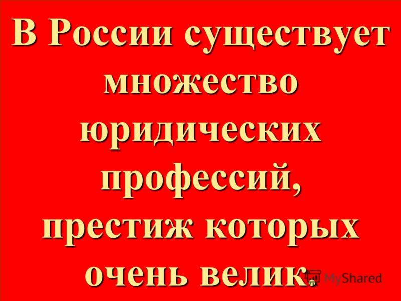 В России существует множество юридических профессий, престиж которых очень велик.