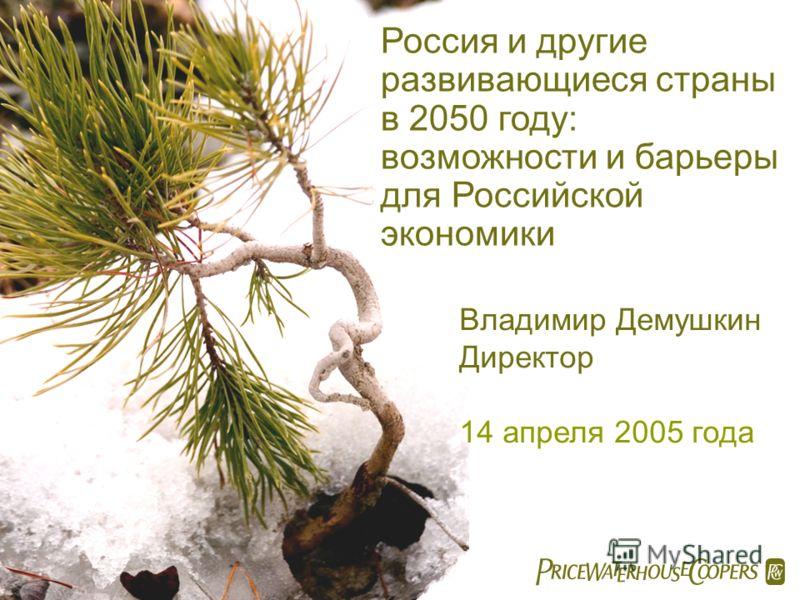 Россия и другие развивающиеся страны в 2050 году: возможности и барьеры для Российской экономики Владимир Демушкин Директор 14 апреля 2005 года